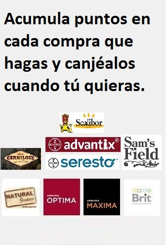 Puntos_registro