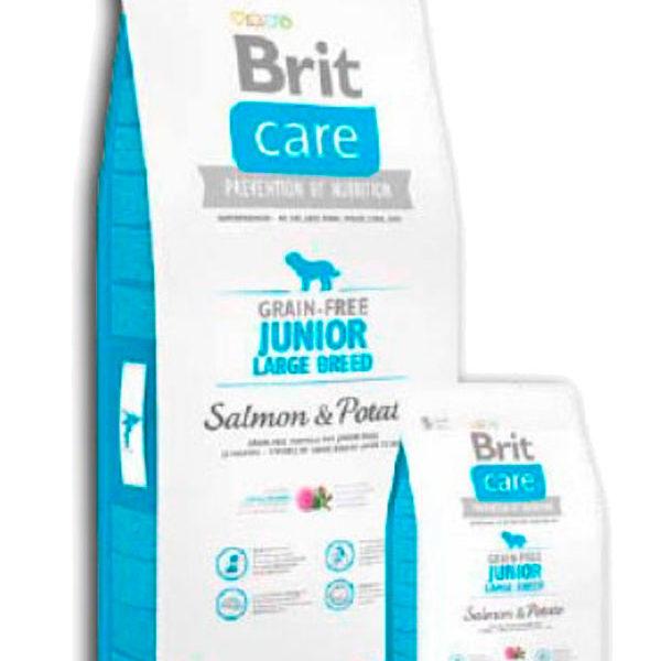 Brit Care Grain Free Junior Salmón y Patata