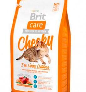 Brit Care Cat Cheery