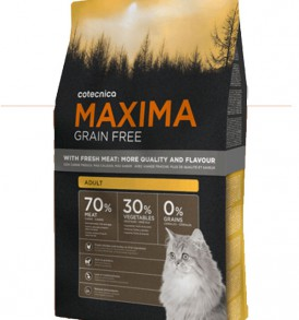 Maxima Grain