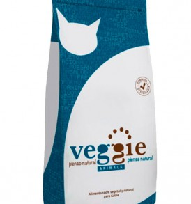 gato-veggie-animals-vegano