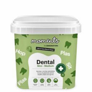 Moments dental mini-medium